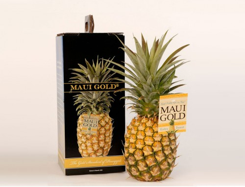 Packaging Design – Maui Pineapple Company