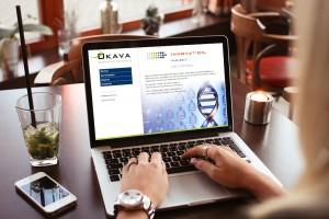 Branding and Website Design Okava LLC