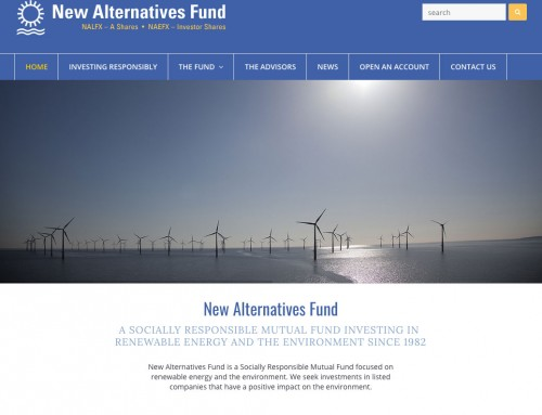 Website Design – New Alternatives Fund